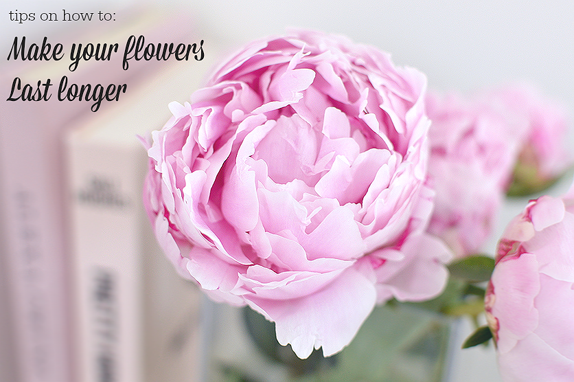 make your flowers last longer