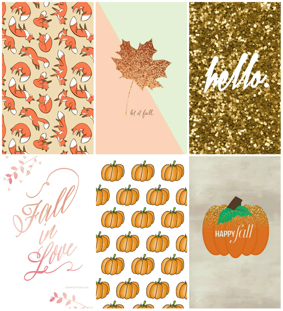 autumn inspired iphone wallpapers
