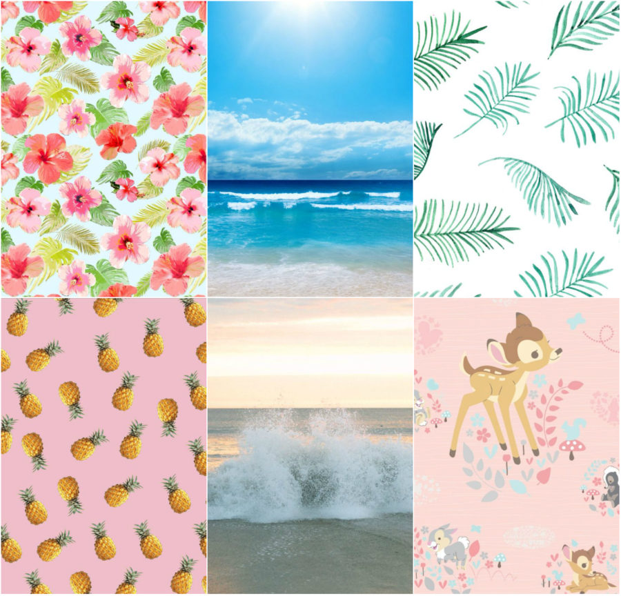 Summer Inspired Phone Wallpapers